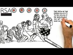 RSA Animate - The Divided Brain - YouTube
