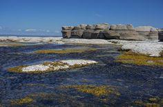 L'île de Quarry, dans le parc de l'Archipel des îles de Mingan Road Trip, Destinations, Canada, Kayak, Newfoundland, Quebec, The Good Place, Volcanoes, Photos