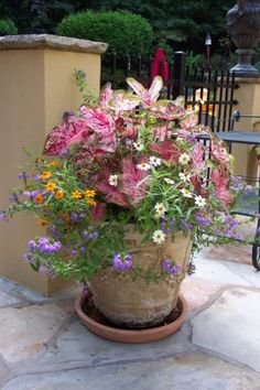 If you're limited for space, a cottage garden container can work very well.