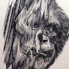 Image of Glitch Ape