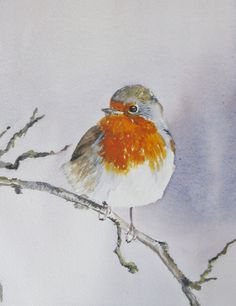 Christmas Robin. I miss seeing these little birds while living in England. Little cotton balls of cuteness...