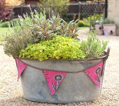 Planting a tin bath herb garden Tin bath planted with herbs (and decorated with bunting) Back Gardens, Small Gardens, Outdoor Gardens, Herb Garden Pallet, Diy Herb Garden, Tin Bath, Herb Planters, Rustic Planters, Metal Tub