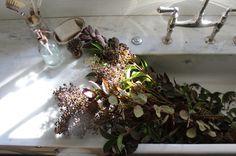 Foraged branches rinse in sink Thanksgiving ; Gardenista