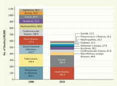 An analysis of causes by death looking at 1900 and 2010. Our mortality rate is about 1/2 what it was. Very interesting.