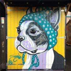 boston terrier street art