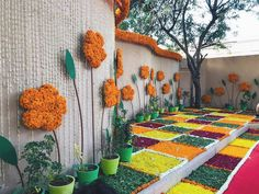 Wedding Wall Decorations, Diy Wedding Backdrop, Diwali Decorations, Festival Decorations, Flower Decorations, Indian Wedding Receptions, Wedding Mandap, Peach Wedding Invitations, Mehndi Decor