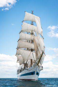 Antwerp – Lisbon TSR 2016 – Tall Ships Gallery Poster Pictures, Tall Ships, Antwerp, Lisbon, Sailing Ships, Boat, Russia, Gallery, Sailing Yachts