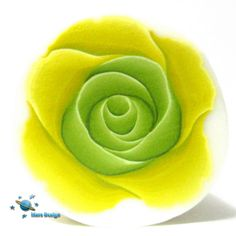 Two tones green rose   Flickr - Photo Sharing!