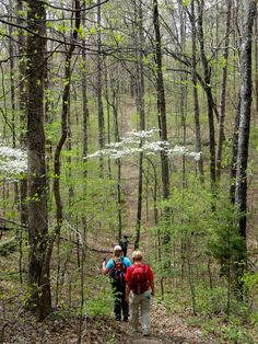 Hiked 16 miles on the Wappapello Section of the Ozark Trail April 26, 2014