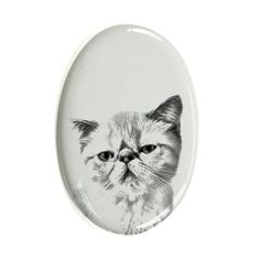Exotic Shorthair, oval gravestone from ceramic tile with an image of a cat >>> See this great product. (This is an affiliate link and I receive a commission for the sales) Cat Reading, Kitty Images, Pet Dogs, Pets, Exotic Shorthair, Cat Memorial, Cat Face, Pet Supplies, Diy