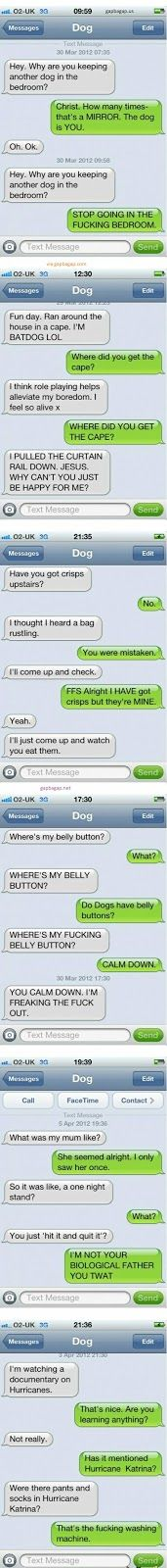 Top 5 Hilarious Text Messages ft. Funny Dogs