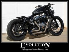 Harley Sportster Bobber › The Harley Sportster And Buell Sporty Bobber Evolution