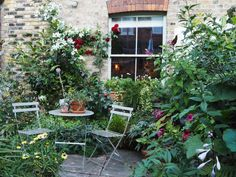 Urban Garden Design How to create a garden for entertaining - What you need to know about creating a garden for entertaining - installing an outdoor kitchen, growing tall plants for privacy and buying easy-to-maintain garden furniture. Small Courtyard Gardens, Back Gardens, Small Gardens, Terrace Garden, Patio Gardens, Garden Hose, Garden Beds, Small Cottage Garden Ideas, Garden Cottage