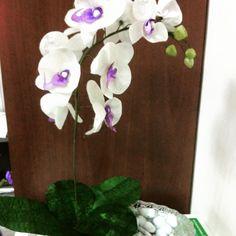 kozadan  orkide çiçeği 100TL