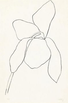 Cyclamen II by Ellsworth Kelly. love the idea of these Kelly sketches as minimalist tattoos
