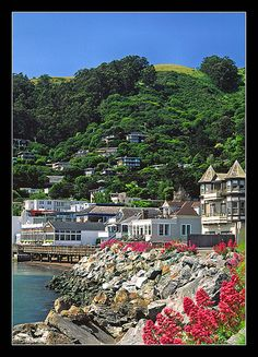 Sausalito, California  - a place I would visit when I lived in Novato. Born in San Diego, Grew up in Novato California.