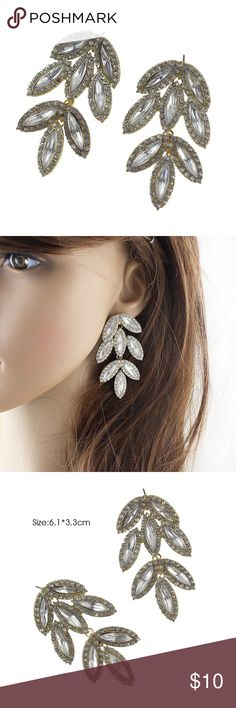 Large Dangle Earrings Brand new and never worn large Rhinestone Dangle earrings. Jewelry Earrings