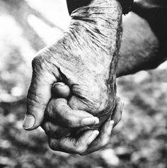 """Excerpt From the Poem """"These Hands, These Hands""""  I have seen hands like this before in every size and color.  Hands that are parched  and withered, strong hands, tired hands. Hands that can bear any load, hurting hands that are calloused  and bent, yet these hands can be  as gentle as a kitten's paw, ready  and able to hold and heal.  © 2001 Susan Maree Jeavons"""
