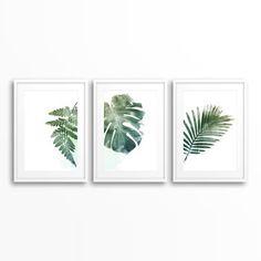 Botanical art prints set of 3