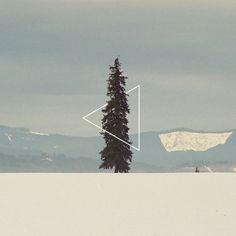 album artwork #design