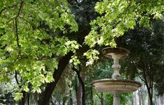 Borghese gardens / Rome