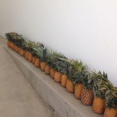 pineapples, pineapples, pineapples - megan morton styling @ the school