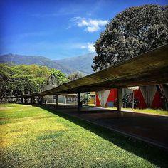 Universidad Central de Venezuela  Fotografía cortesía de @gcm003  #LaCuadraU #GaleriaLCU #Caracas #CaracasUnica #LaCentral #UCV