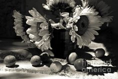 Title  Bouquet Sunflowers   Artist  Svetlana Kandybovich   Medium  Photograph
