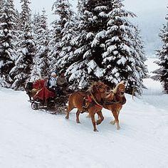 romantic winter wonderland