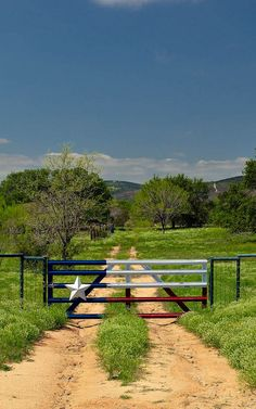 Fun Texas ranch gate painted to resemble the Texas flag.
