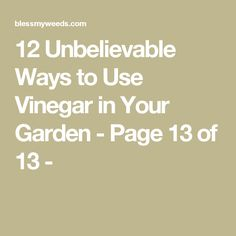 12 Unbelievable Ways to Use Vinegar in Your Garden - Page 13 of 13 -
