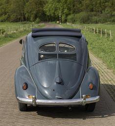 (Large) Enter your pin description here. Beetle, Volkswagen, Vehicles, Sports, June Bug, Hs Sports, Beetles, Car, Sport