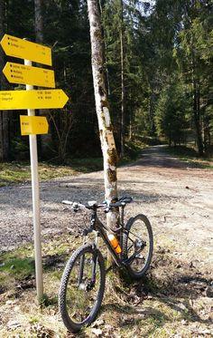 Zinnkopfrunde mit dem Mountainbike - Ruhpolding/ Chiemgau.