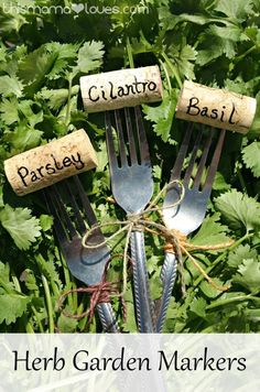 Herb Garden Markers from This Mama Loves. This is a fun way to label your herbs in the garden this summer!