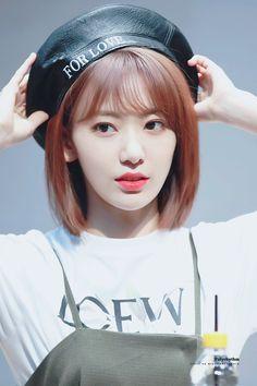 Kpop Girl Groups, Kpop Girls, Yuri, Honda, Sakura Miyawaki, Naoko, Japanese Girl Group, Kim Min, Fandom