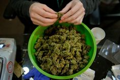 This governor wants to legalize marijuana for all, 'tax the heck out of it'