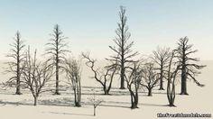 http://tf3dm.com/3d-model/some-dead-trees-32880.html