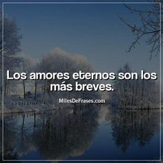 Los amores eternos son los más breves. Positivity, Love, Quotes, Inspirational, Amor, Someone Like You, Romantic Quotes, Pretty Quotes, Mexican Phrases