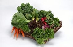 3 Dangers of a Raw Diet