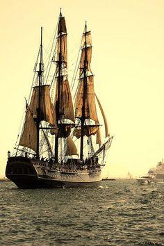 Tall Ships and Sailing Old Sailing Ships, Sailing Boat, Wooden Ship, Pirate Life, Sail Away, Tall Ships, Water Crafts, Lighthouse, Nautical