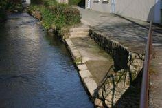 Anneville-en-Saire: balade sur les rives de la Saire