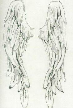 Abel wings drawing idea