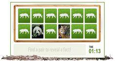 Ympäristökasvatus - Uhanalaiset eläimet - muistipeli - WWF.