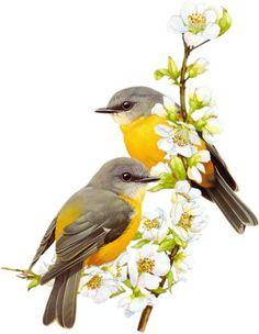 Цветы и птицы. Рис. 1 (цветуща |