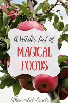 The Kitchen Witch& Food List: Magical Properties of Foods, Wicca Recipes, Potions Recipes, Kitchen Magic, Witches Kitchen, Altar, Magick Spells, Green Witchcraft, Witchcraft Herbs, Witch Herbs