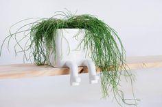 urban legs gardening II