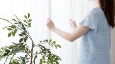 カーテンに生えてしまったカビを、ご家庭で洗濯するための方法を紹介。頑固なカビもほんの少しの手間で落とせる、消毒用エタノールを使った+αの方法もあり。カーテンのカビの原因とその対策方法も合わせてチェックして、清潔なカーテンを保ちましょう!