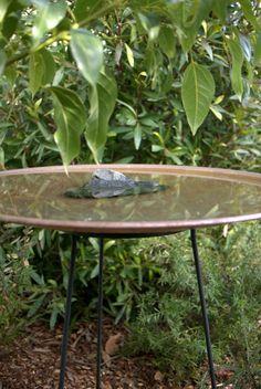 Floating Birdbath: Steel Stand with Copper Dish by Mallee Design Australian Garden Design, Copper Dishes, Native Australians, Bird Baths, Outdoor Living, Outdoor Decor, Good Vibes Only, Native Plants, Yard Art
