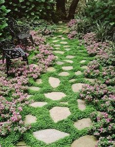 I love when pavers are set with moss or grass separating them.