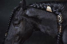 """Cocoon Horses"" by Mariana Garcia http://marianagarcia.org/COCOON-HORSES"